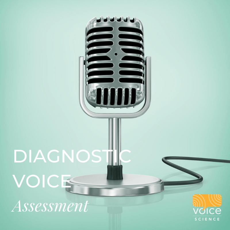 Diagnostic Voice Assessment