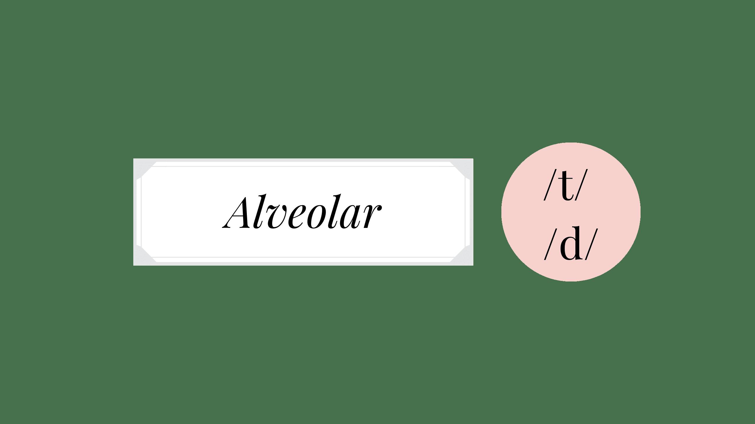 English plosive consonants